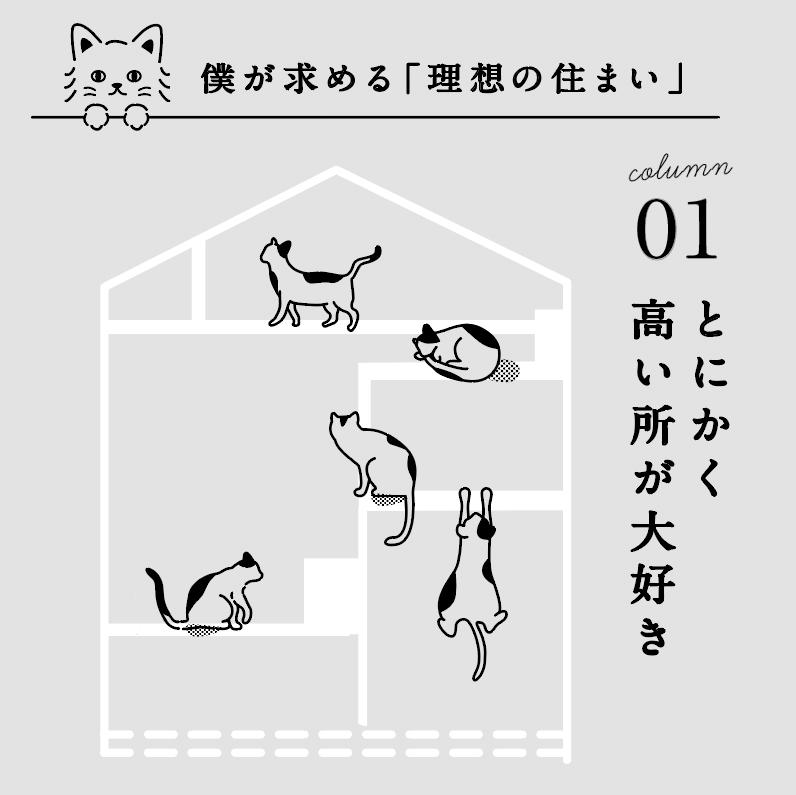 猫のモデルハウス