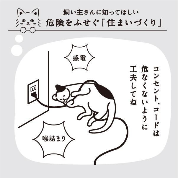 ネコハウスではコンセント・コードは危なくないように注意してね。