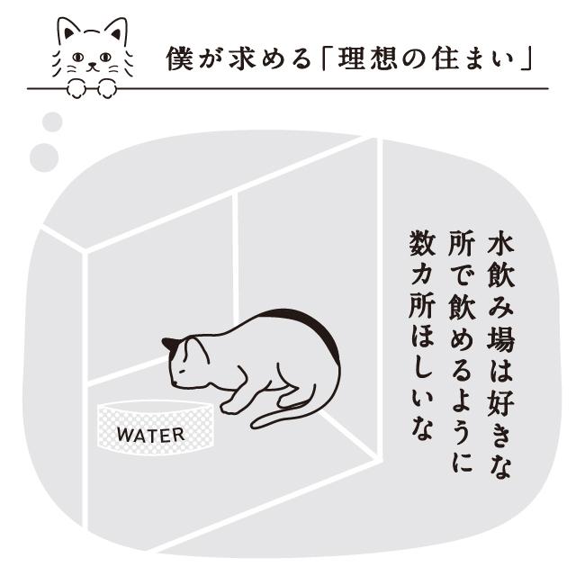 猫の水飲み場は何カ所か設置してね
