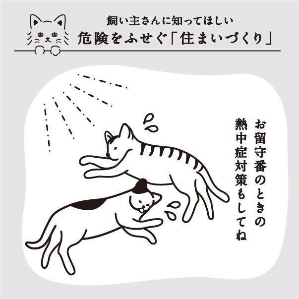 留守の時、猫が熱中症にならないように注意