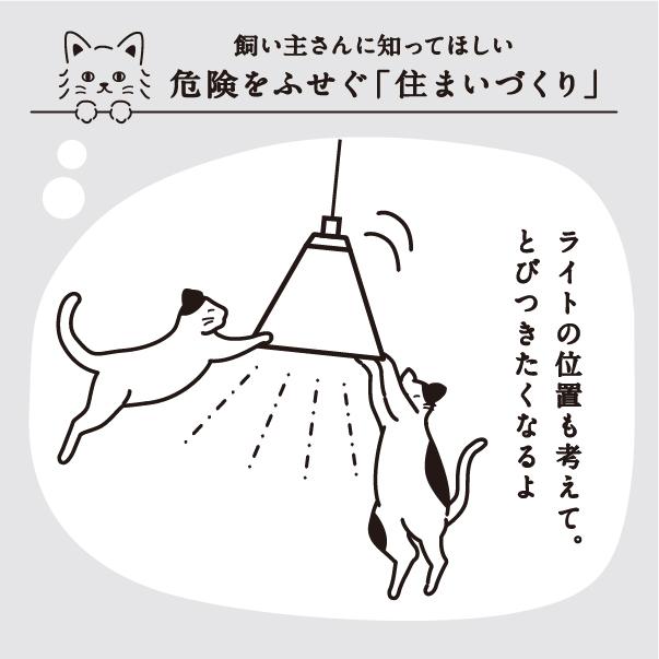 ライトに猫が飛びつかないように注意!