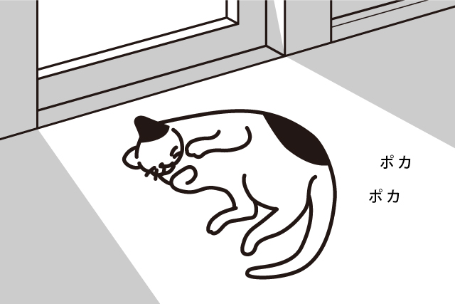 ひなたぼっこが元気の秘訣?!