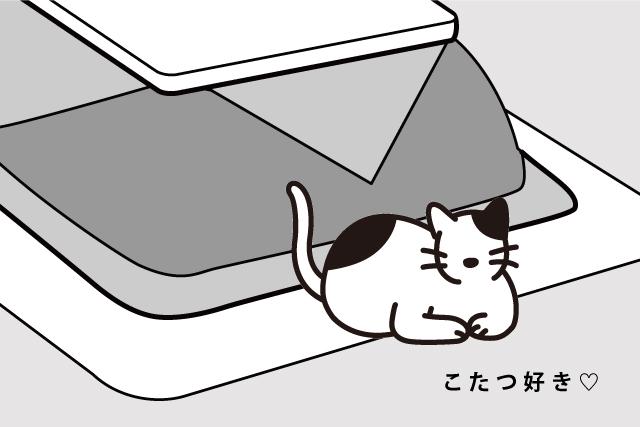 春は要注意!猫の気分はいかが?