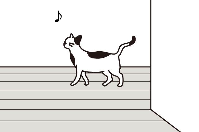 猫の肉球を楽しもう