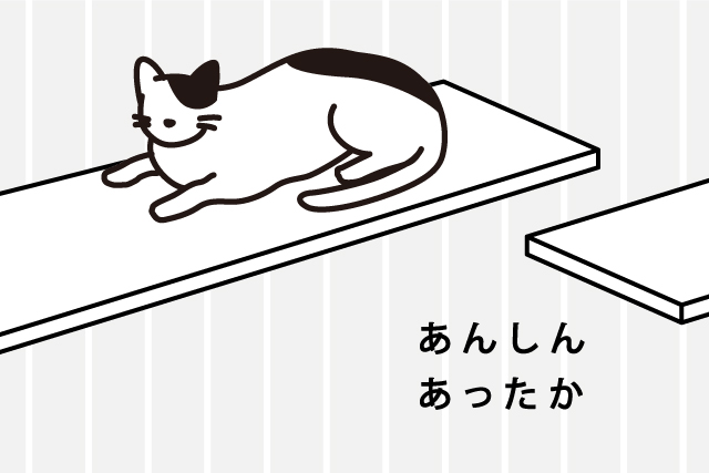 猫が選びたい、明るさ&温かさ!