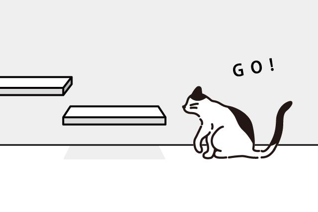 猫と暮らしつづける準備